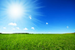 5407896-fresh-green-grass-with-bright-blue-sky.jpg